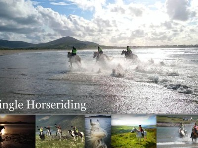 Dingle Horseriding