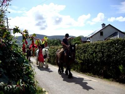 Long's Horse Riding & Trekking Centre