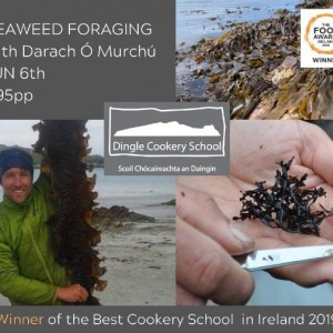 Seaweed Foraging with Dingle Cookery School: June/Meitheamh